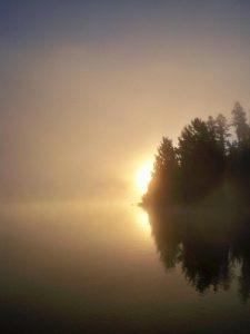 Sunrise on Birch